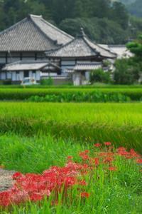 飛鳥寺界隈 - まほろば 写真俳句