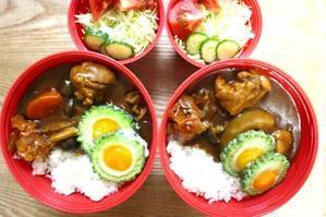 チキンカレー弁当と三連休 - オヤコベントウ