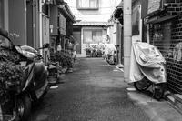 路地裏 - tonbeiのはいかい写真日記