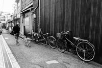 散歩 - tonbeiのはいかい写真日記