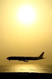 黄金色 - 南の島の飛行機日記
