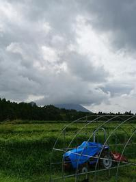 台風接近 - 山脇農園ブログ