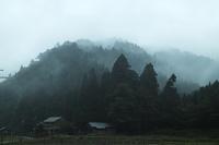 15℃で冷たい雨の朝に・・・・朽木小川・気象台より - 朽木小川・気象台より、高島市・針畑・くつきの季節便りを!