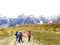 黄葉MAX!!黄金の楽園、ラーチバレーハイキング - ヤムナスカ Blog