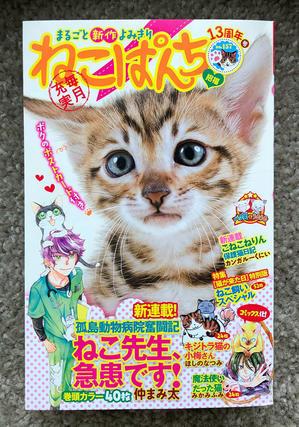 ねこぱんち「でも、猫がいるじゃないか」 - ■山野りんりんの近況ブログ