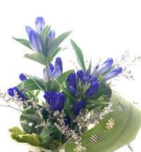 #leafpunch  長く楽しむ方法  マスキングテープ - **おやつのお花*   きれい 可愛い いとおしいをデザインしましょう♪