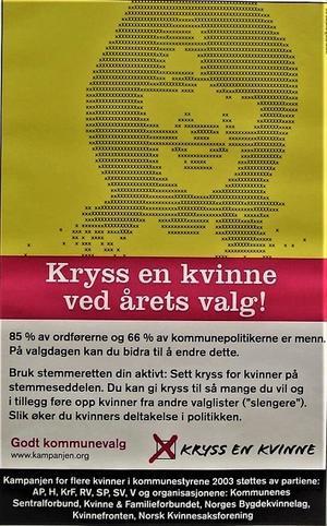 投票方法をうまく使って女性議員増へ(ノルウェー) - FEM-NEWS