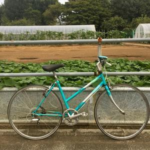 二つ折りという名前の自転車 - 多分なんとかなるでしょう 外伝2