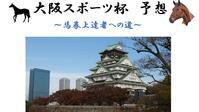 大阪スポーツ杯2019予想 - 競馬好きサラリーマンの週末まで待てない!