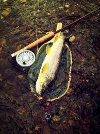 道南釣行!2019 fly fishing trip9 - 山と渓のホールで渓魚と奏ならん