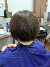 育毛はキレイになる為に - ☆お肌に優しい 低刺激の白髪染め 大人のためのおしゃれサロン 岩見沢美容室ココノネ太田汐美の パーマネント日記