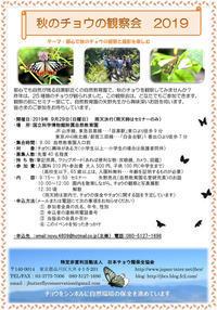 都心のモンキアゲハ&高原のキアゲハ&埼玉県秋のアゲハたち - ヒメオオの寄り道