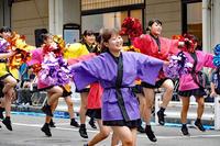 新潟総おどり5(万代) - くろちゃんの写真