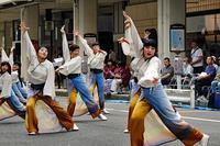 新潟総踊り6(万代) - くろちゃんの写真