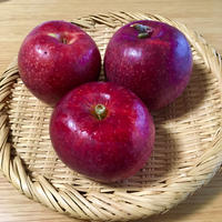 リンゴ、お餅、白鳥 - まいにちノート(2冊目)