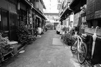 路地裏(2) - tonbeiのはいかい写真日記