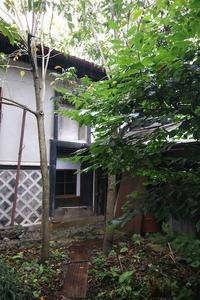 漆の木 - 池内建築図案室 通信