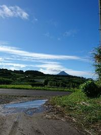 台風一過 - 山脇農園ブログ