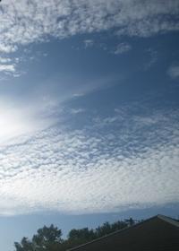 鰯雲!9/23 - つくしんぼ日記 ~徒然編~