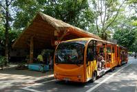 August 2019 Singapore Zoo 6 -WILD AFRICA- - 墨色の鳥籠