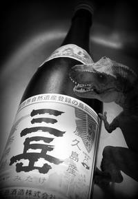芋焼酎「三岳」-REX - 花鳥風月あめあられ
