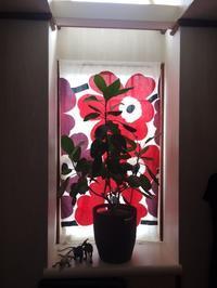 マリメッコ・ウニッコな窓 - ミニチュアブルテリア ダージと一緒3