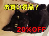 20%OFF★お買い得品★UPしました! - 猫の首輪屋★CAROL ~キチコの店長日記~