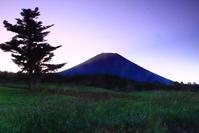 令和元年9月の富士(22)富士ヶ嶺の朝の富士 - 富士への散歩道 ~撮影記~
