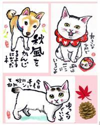 まゆみさんの絵手紙2 - 素人木工雑貨と犬猫日記