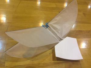 9月29日に飛行会あります。 - 超小型飛行体研究所ブログ