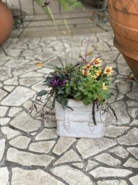 9月ガーデン&クラフツ寄せ植え教室① - 小さな庭 2