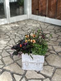 9月ガーデン&クラフツ寄せ植え教室② - 小さな庭 2