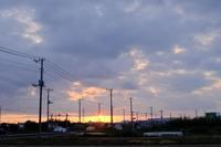 朝散歩 - 空を見上げて
