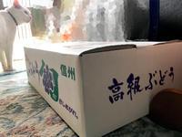 親戚からブドウが届いた - Lucky★Dip666-Ⅳ