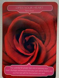 Lavian Rose〜2枚のバラのカードから〜 - 星と月の女神〜Déesse des étoiles et de la lune〜