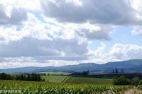 遠くに見えるマイルドセブンの丘~9月の美瑛 - My favorite ~Diary 3~