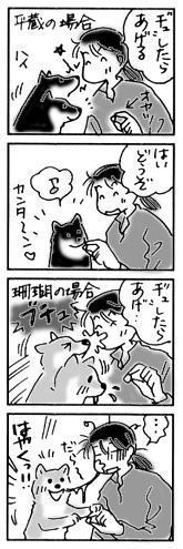 2004年12月5日のシバツレ漫画2 - 柴と徒然日記