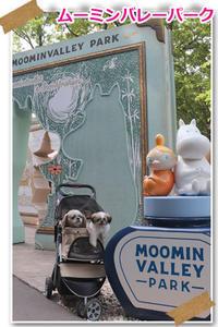 2019年9月19日ムーミンバレーパーク - 週末は、愛犬モモと永吉、拓海とお出かけ!Kimi's Eye