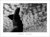 秋の空 - Minnenfoto