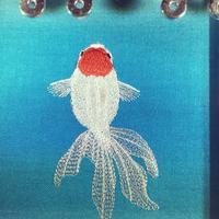 丹頂金魚の刺繍(^^) - ソライロ刺繍