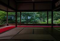 秋海棠咲く宝泉院 - 鏡花水月