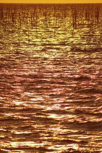 「世界を二分するもの」 - 光と彩に、あいに。