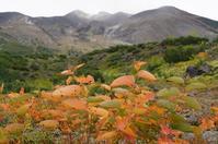 十勝望岳台、奧原なつ(広瀬すず)の柴田牧場、見えるかな。+四季彩の丘。 - Turfに魅せられて・・・(写真紀行)