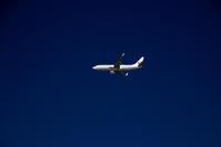 ゴーアラウンド後 - 南の島の飛行機日記