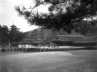 一世紀前の広島 厳島神社  五重塔と回廊 をガラス乾板でぶらり - 写真機持って街歩き、クラシックカメラとレンズを伴に