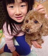 行方不明になっている小倉美咲さん(7)、未だ見つからず。DSによる誘拐?神隠し? - 蒼莱ブログ