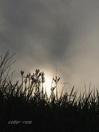 幻日とシルエット - 瞳の記憶