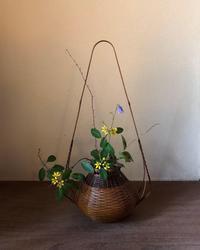 秋草を楽しむ1 - g's style day by day ー京都嵐山から、季節を楽しむ日々をお届けしますー