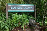 August 2019 Singapore Zoo 9 -REPTILE GARDEN- - 墨色の鳥籠