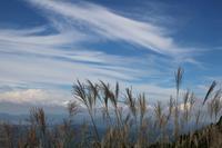 雲が流れ、ススキが泳ぐ - ♪一枚のphotograph♪